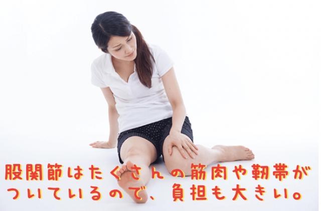 股関節はたくさんの筋肉や靭帯がついているので、負担も大きい。